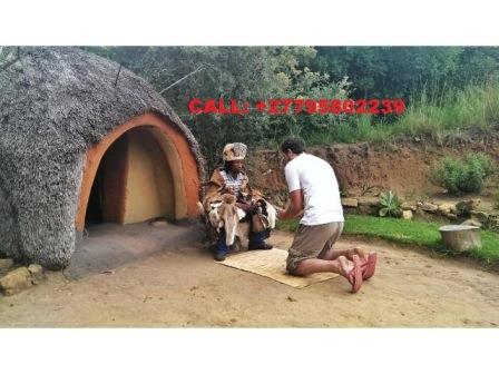Traditional healer 15