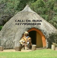Traditional healer 17