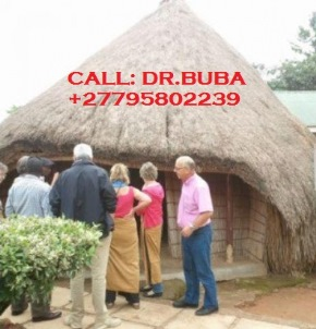 Traditional healer 20