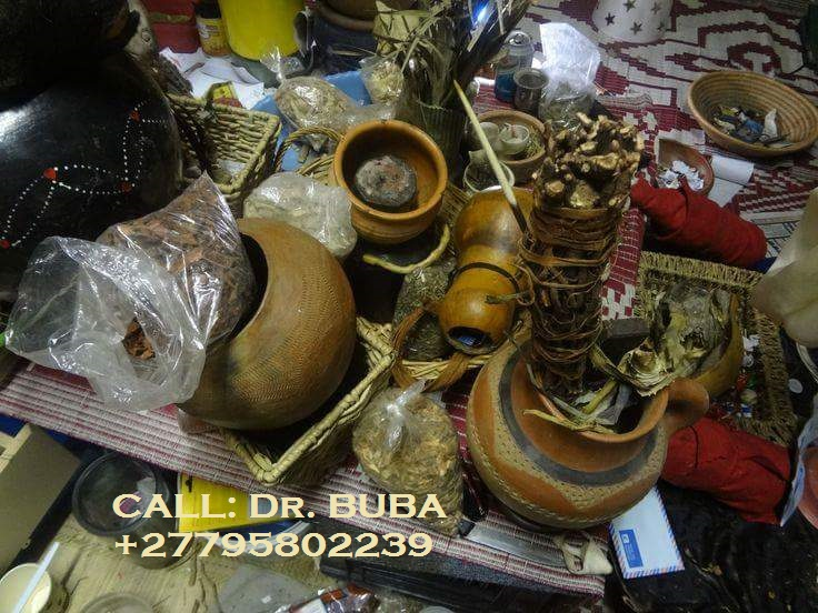 traditional healer11
